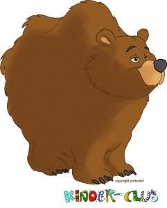 Wolly der Bär